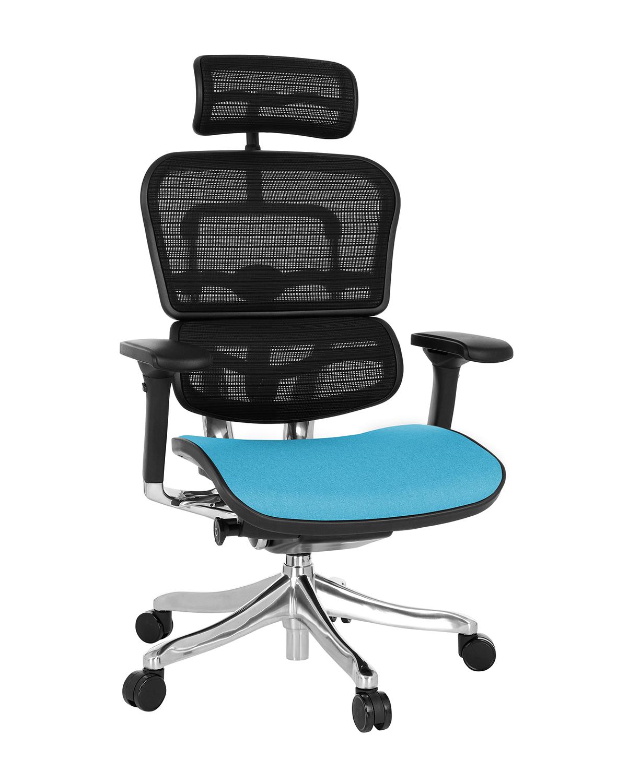Ergohuman Plus Elite Color, Backrest: KMD 31, Seat: Medley MD10