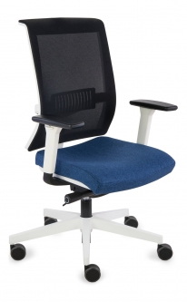 Fotel Level WS